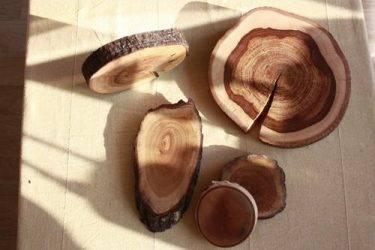 ✅ чем полить дерево, чтобы оно быстро засохло и погибло, народные средства - tehnomir32.ru