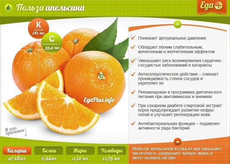 Апельсин. полезные свойства. — полезный.про