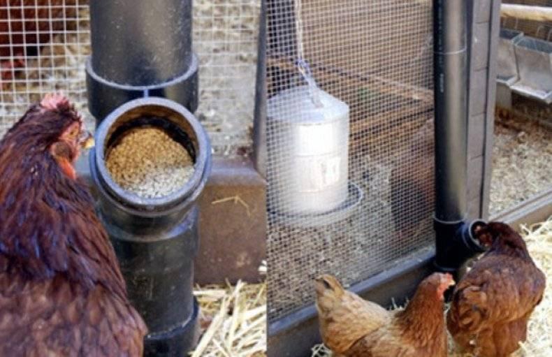 Бункерные кормушки для кур: как сделать кормушки для цыплят-бройлеров и взрослых кур своими руками по чертежам?