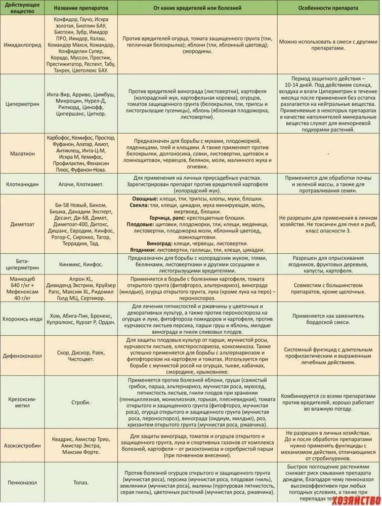 Фунгициды для винограда: какой выбрать, топ 9 лучших, лечение