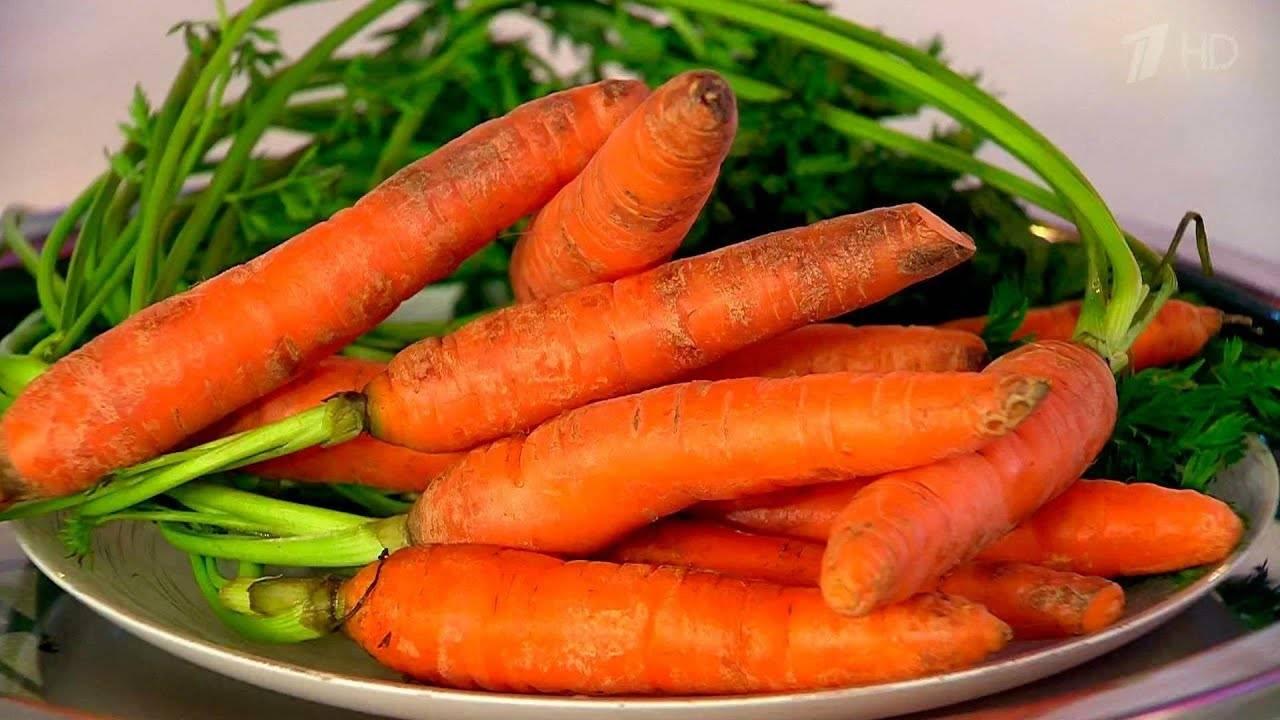 Полезна ли морковь для зрения