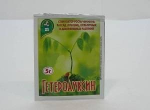 Активация роста растений с помощью раствора гетероауксина