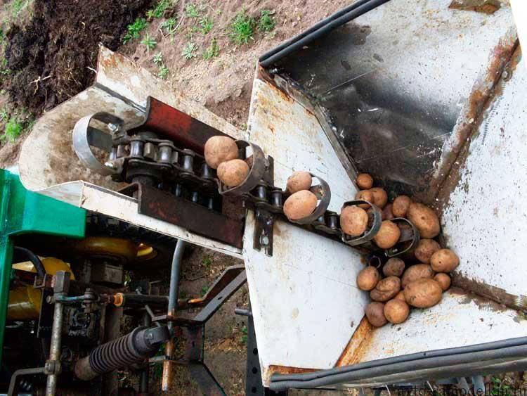 Как сделать картофелесажалку для мотоблока своими руками - морской флот