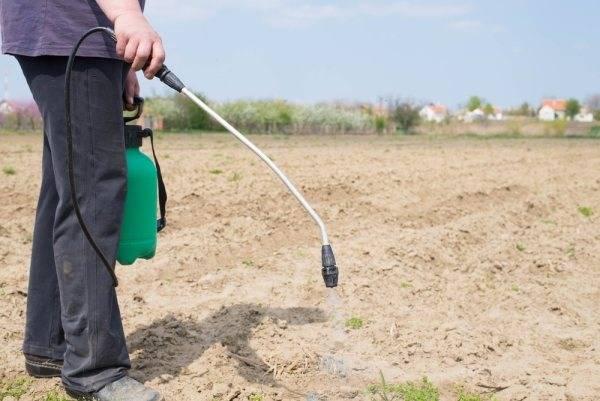 Лазурит от сорняков: инструкция по применению гербицида, отзывы, цена