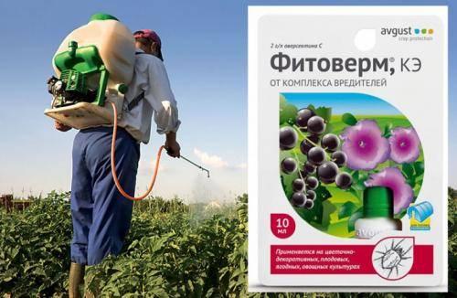 Фитоверм, кэ (инсектициды и акарициды, пестициды) — agroxxi