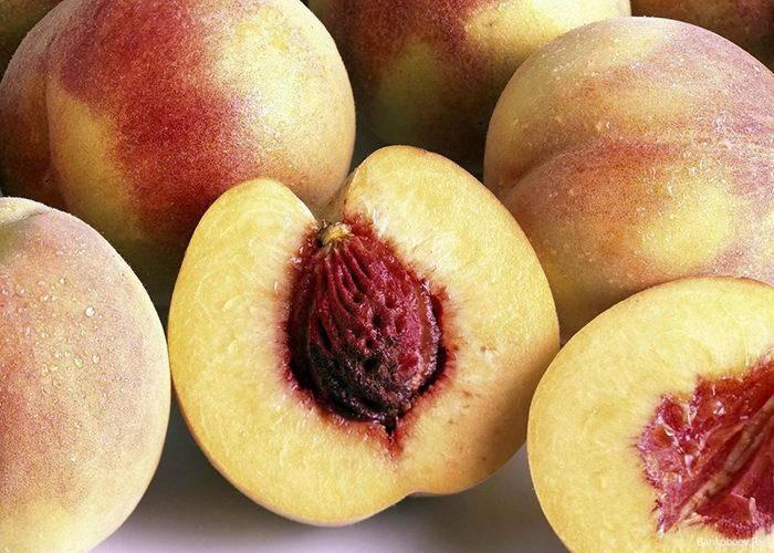 Персик из косточки: посадка и уход, как вырастить в домашних условиях?