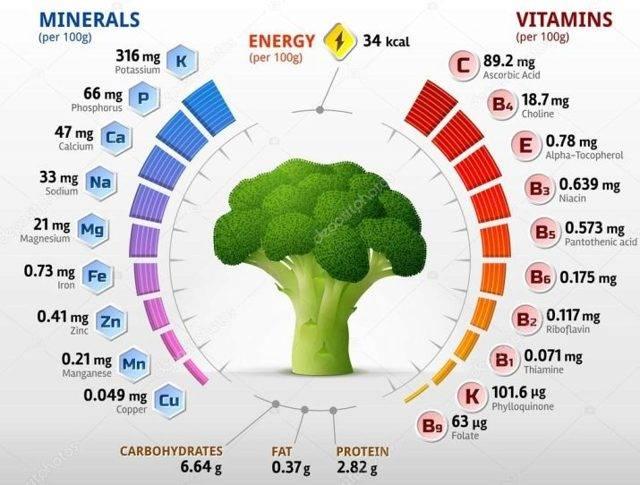 Брокколи: популярные сорта для хорошего урожая   огородники