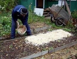 Проверенные способы использования опилок на даче - огород, сад, балкон - медиаплатформа миртесен