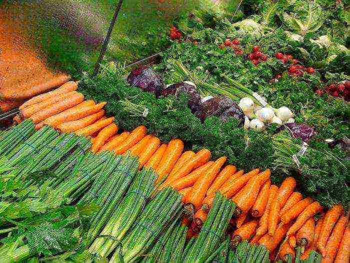 Как использовать золу при выращивании растений