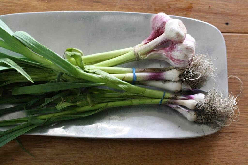 Томатный сок для похудения: рецепты | компетентно о здоровье на ilive