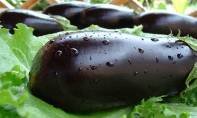 Капуста при грудном вскармливании: польза и вред | компетентно о здоровье на ilive