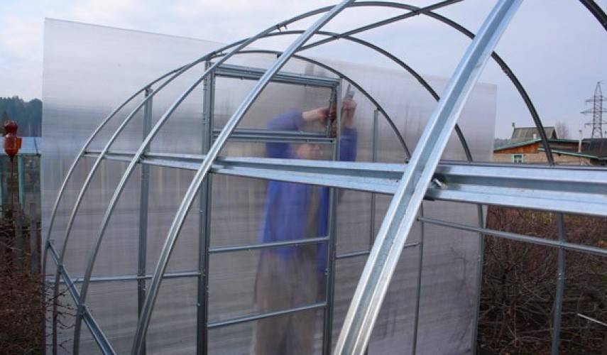 Теплицы из поликарбоната: оптимальный выбор материала по толщине и цвету