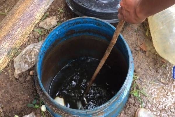 Жидкий биогумус, секреты интенсивного роста растений и богатого урожая