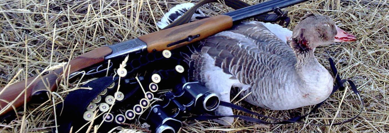 Секреты осенней охоты на гуся