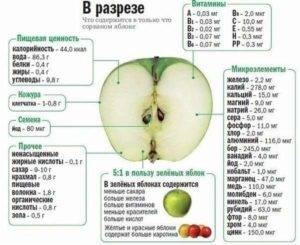 Сколько калорий в яблоке зеленом, красном, запеченном, сушеном и блюдах с яблоком? можно ли есть яблоки при похудении?