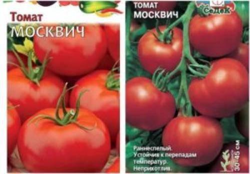 Томат московский деликатес