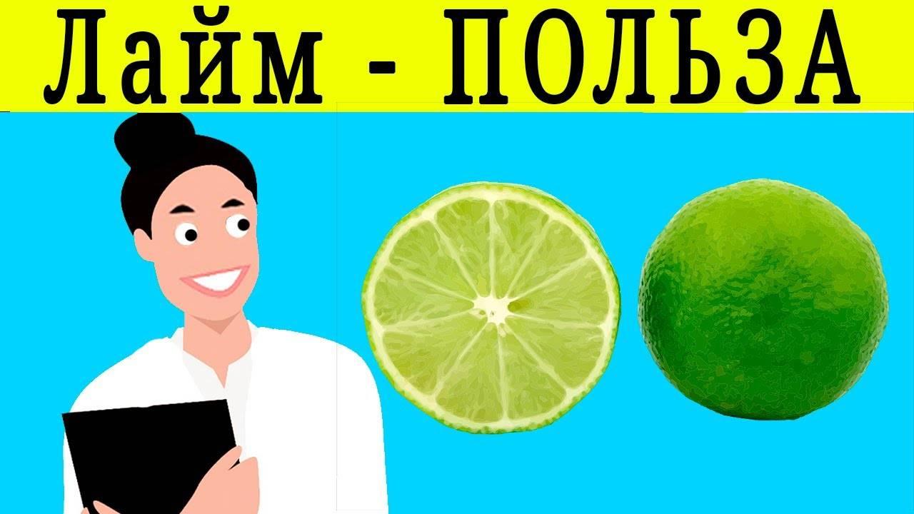 Как правильно употреблять куркуму: безопасная суточная доза, полезные свойства, противопоказания - новости yellmed.ru