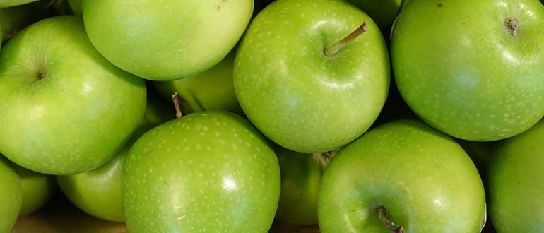 Зеленые яблоки: сорта, польза, бжу, фото
