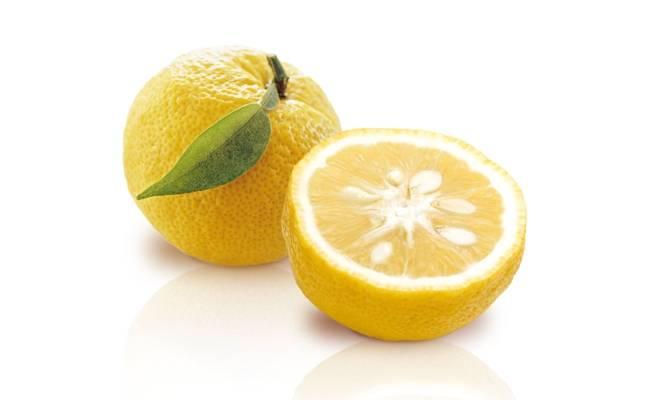 Японский лимон юдзу фрукт: описание сорта