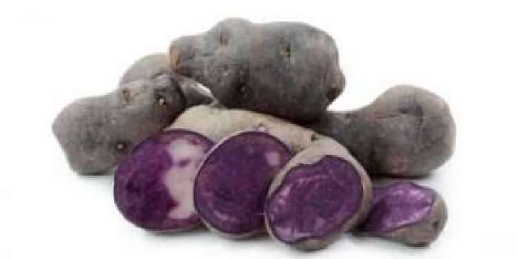 Картофель фиолетовый: состав, калорийность, польза, рецепты