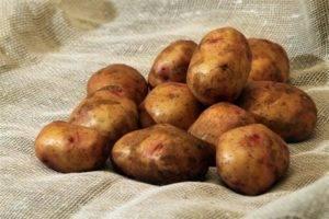 Почему картошка чернеет внутри при хранении в морозилке
