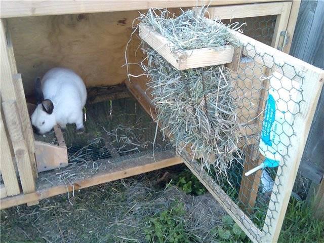 Как легко и быстро сделать клетку для кроликов своими руками: размеры и чертежи - огород, сад, балкон - медиаплатформа миртесен