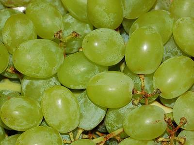Калории винограда зеленого с косточками