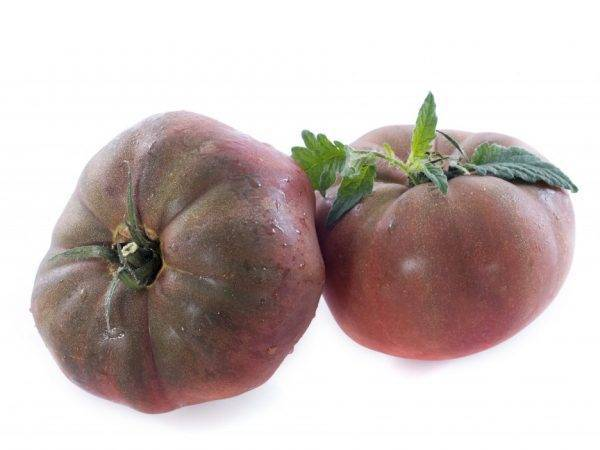 Томат «черный крым»: характеристика и описание, выращивание и уход, фото