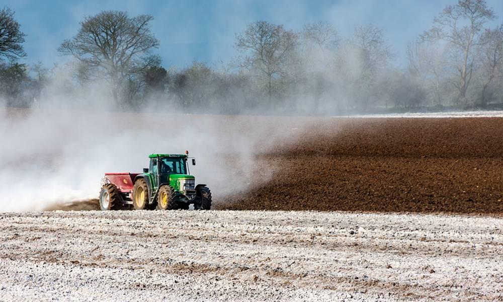 Посев озимой пшеницы и дальнейшая технология выращивания зерна, правила севооборота при возделывании