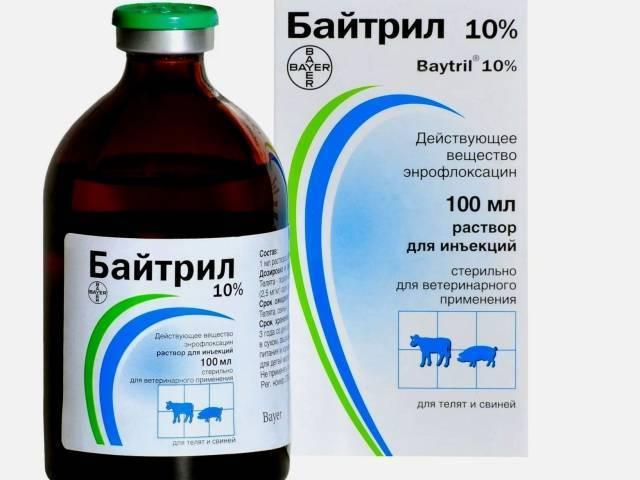 Препараты для анестезии кроликов. препараты для ингаляционной анестезии критически больных кроликов в ветклинике спб.