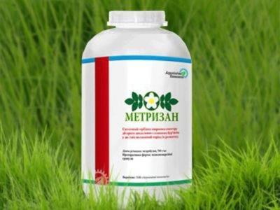 Лазурит – гербицид от сорняков на даче: инструкция по применению и отзывы