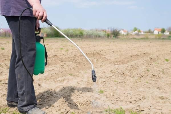 Лазурит от сорняков на картошке – 7 советов по применению и описание особенностей