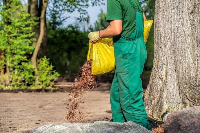 Приствольный круг: зачем нужен и как ухаживать? | огородники