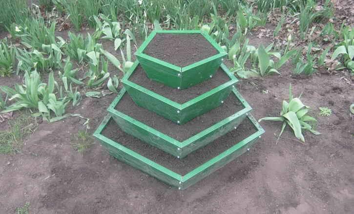 Выращивание огурцов. полная инструкция: от посева семян до сбора урожая