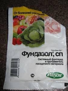 Фундазол: инструкция по применению для растений и отзывы, как обрабатывать препаратом от болезней клубнику, огурцы, орхидеи, розы