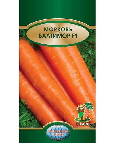 Морковь балтимор f1: отзывы, описание сорта, фото — selok.info