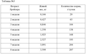 О породе бройлеров росс 308: описание и характеристики, весь по дням (таблица)