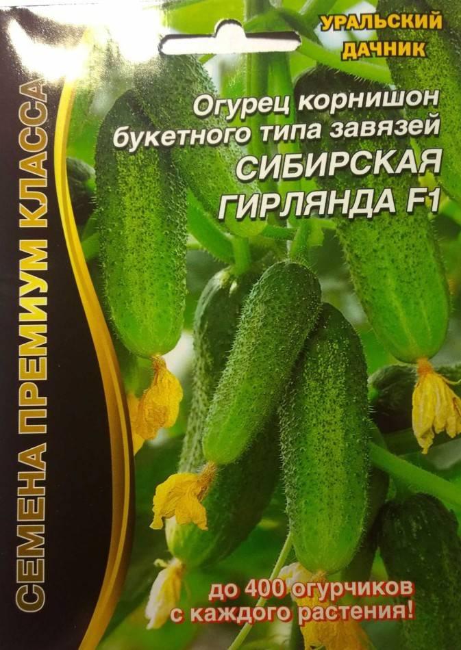 Огурец миллионер f1: подробное описание урожайного сорта, отзывы, правила выращивания