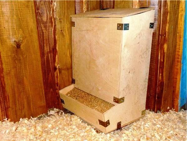 Что такое бункерные кормушки для кур и как их сделать своими руками?