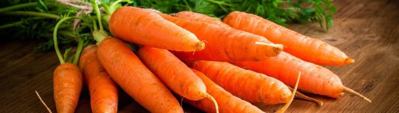 Витамины в моркови. микроэлементы, минералы и клетчатка в моркови