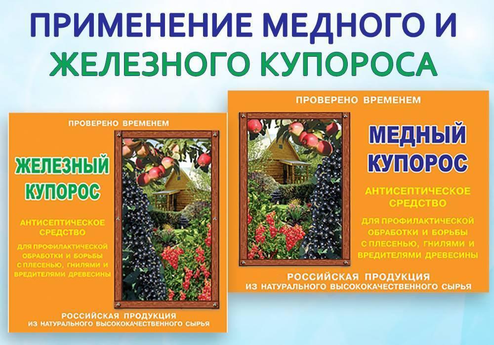 Опрыскивание помидоров медным купоросом: как разводить и обработать