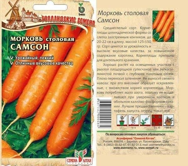 Морковь самсон: характеристика и описание сорта, плюсы и минусы, особенности выращивания и технология производства семян