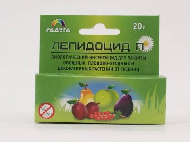 Плодожорка на яблоне: методы борьбы