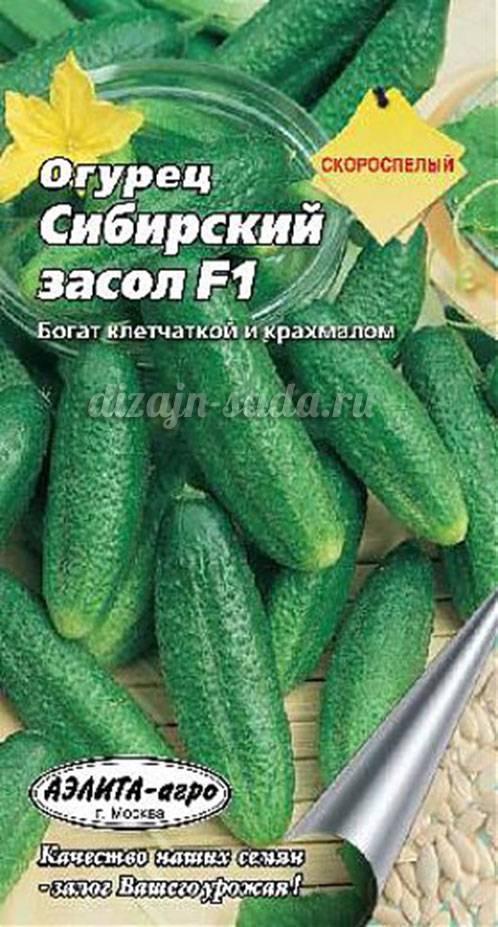 Сорта огурцов для засолки и консервирования: 85 фото, особенности и свойства огурцов