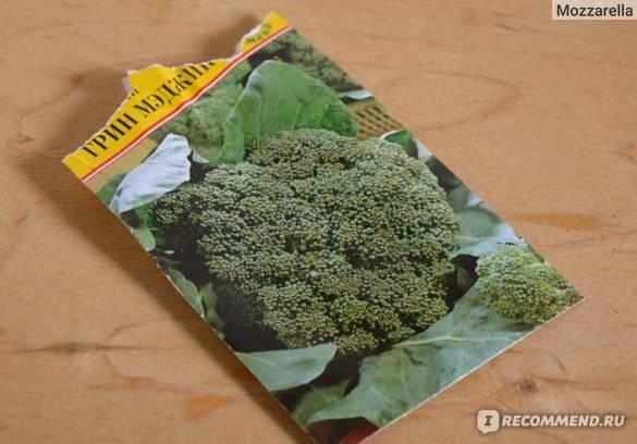 Сорт брокколи грин мэджикf1 - пдробное описание с фото
