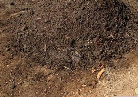 Куриный помет как удобрение: свойства, подготовка и внесение
