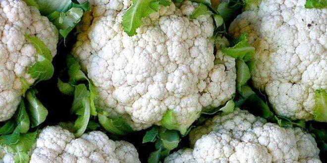 Цветная капуста — калорийность (сколько калорий в 100 граммах)