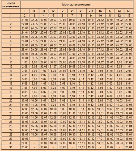 Сколько ходит беременная свинья (дней, месяцев): сроки беременности