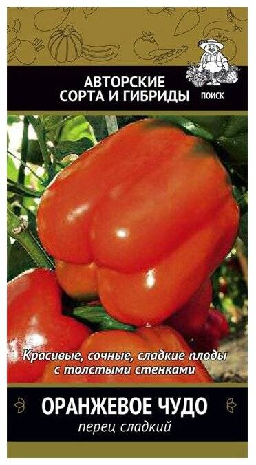 Перец «оранжевое чудо»: характеристики сорта и особенности выращивания в теплице