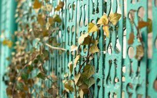 Забор для палисадника: 8 самых красивых и недорогих вариантов